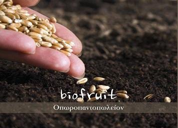 Bio Fruit Οπωροπαντοπωλείον
